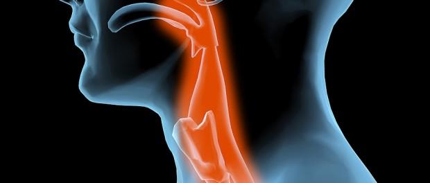Ожоги верхних дыхательных путей